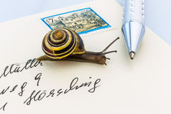 Snail on envelope Royalty Free Stock Images
