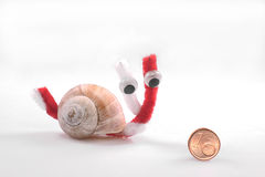 Snail and the eurocent Stock Images