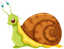 Snail with eyeballs sticking out Royalty Free Stock Photo