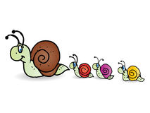 Snail family take a walk Royalty Free Stock Images