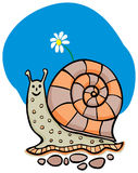 Snail with the flower Stock Images