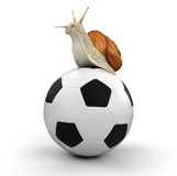 Snail and Football (clipping path included) Royalty Free Stock Photo