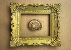 Snail in the frame Royalty Free Stock Photos