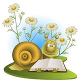 Snail on a glade with camomiles Stock Photo