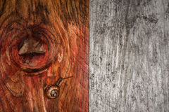 Snail on grunge wood background Stock Photo