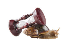 Snail and an hour-glass Royalty Free Stock Photography