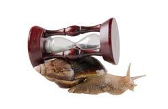 Snail and an hour-glass Stock Photos