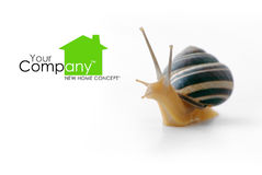 Snail House Stock Photography