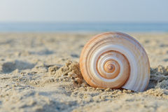 Snail House Stock Image