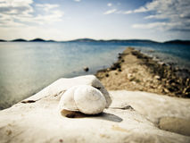 Snail house on the beach (26) Royalty Free Stock Images