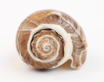 Snail house Royalty Free Stock Photography