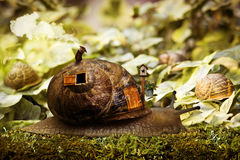 Snail house. A slug or snail, walking in the wood, taking with him his comfortable house furnished with all the comforts. The fireplace is on, the environment is Royalty Free Stock Image