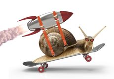 Snail in a hurry Royalty Free Stock Image