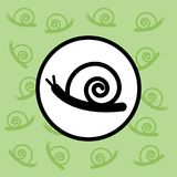 Snail icon sign and symbol on green background Stock Images