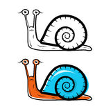 Snail Illustration Royalty Free Stock Image