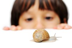 Snail and kid. Is looking it Royalty Free Stock Image