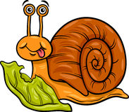 Snail and lettuce cartoon illustration Royalty Free Stock Photo
