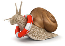 Snail and Lifebuoy (clipping path included) Stock Photos