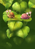Snail Lovers Royalty Free Stock Photos