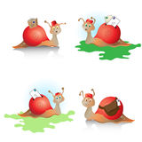 Snail mail Fotografie Stock