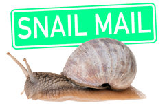 Snail mail Immagine Stock