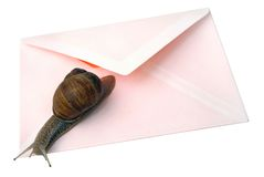 Snail Mail Isolated. Isolated photo of snail and envelope Royalty Free Stock Photo