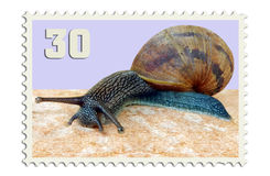 Snail mail stamp Stock Images