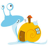 Snail with mobil home Stock Image
