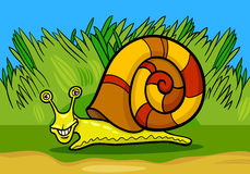 Snail mollusk cartoon illustration Stock Image