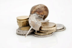 Snail and money Royalty Free Stock Image