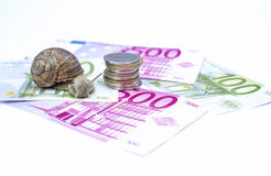 Snail on moneys Royalty Free Stock Photography