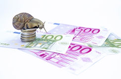 Snail on moneys Royalty Free Stock Images