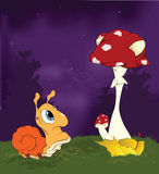 Snail and a mushroom. At night on a glade Stock Image