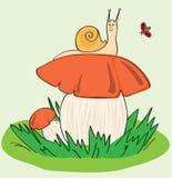 Snail, Mushroom, Ladybird Royalty Free Stock Image