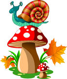 Snail on mushroom Stock Photo