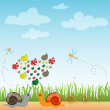 Snail in outdoor natural vector Stock Photography