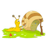Snail the painter Stock Image