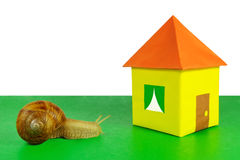 The snail and a paper house Royalty Free Stock Photo