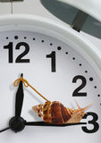 Snail pulling clock hand , slow time concept Royalty Free Stock Photo