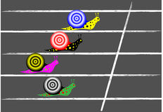 Snail race. Vector snail race on tarmac track Royalty Free Stock Image