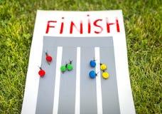 Snail race. Stock Images