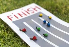 Snail race. Royalty Free Stock Image