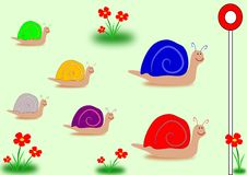 Snail Race General Election Colours. Illustration of snails heading towards the finishing post against a pale green background. Red and yellow flowers are Royalty Free Stock Image