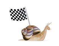 Snail with racing flag. A snail with racing flag Stock Photo