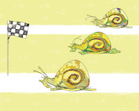 Snail racing Royalty Free Stock Images