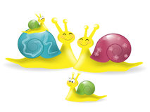 Snail's Family Stock Photography
