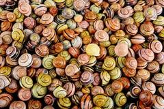 Snail shell background Stock Photo