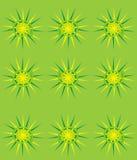 Snail shell pattern vector illustration
