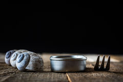 Snail shell and tin can on a wooden old table Royalty Free Stock Photography