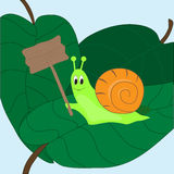 Snail with a sign Stock Image